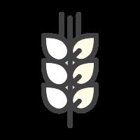 icon-malte
